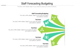 Staff Forecasting Budgeting Ppt Powerpoint Presentation Professional Vector Cpb