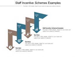 Staff Incentive Schemes Examples Ppt Powerpoint Presentation Show File Formats Cpb