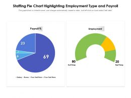 Staffing Pie Chart Highlighting Employment Type And Payroll