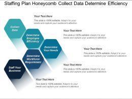 Staffing Plan Honeycomb Collect Data Determine Efficiency