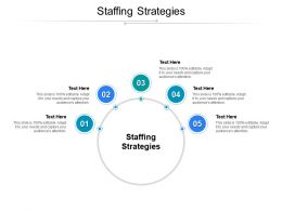 Staffing Strategies Ppt Powerpoint Presentation File Graphics Tutorials Cpb