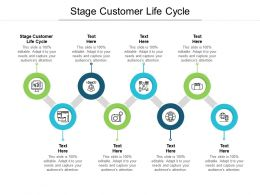 Stage Customer Life Cycle Ppt Powerpoint Presentation Icon Examples Cpb