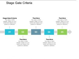 Stage Gate Criteria Ppt Powerpoint Presentation File Objects Cpb