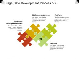 Stage Gate Development Process 5s Management Process Flow Value Cpb