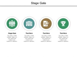 Stage Gate Ppt Powerpoint Presentation Layouts Examples Cpb