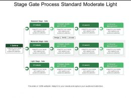 Stage Gate Process Standard Moderate Light