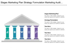 Stages Marketing Plan Strategy Formulation Marketing Audit Channel Analysis
