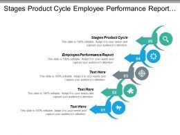 Stages Product Cycle Employee Performance Report Future Scenarios Cpb