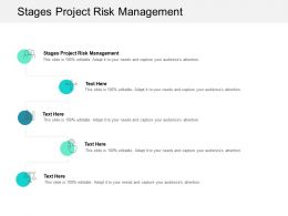Stages Project Risk Management Ppt Powerpoint Presentation File Vector Cpb