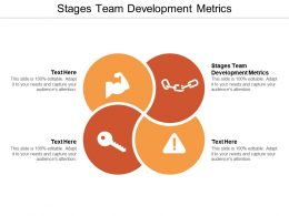 Stages Team Development Metrics Ppt Powerpoint Presentation Files Cpb