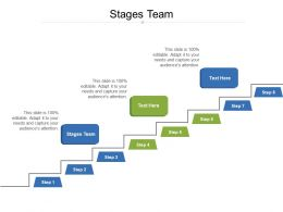 Stages Team Ppt Powerpoint Presentation Pictures Portrait Cpb