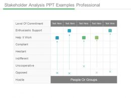 Stakeholder Analysis Ppt Examples Professional