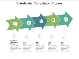 Stakeholder Consultation Process Ppt Powerpoint Presentation Model Gallery Cpb