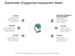 Stakeholder Engagement Assessment Matrix Ppt Pictures Inspiration Cpb