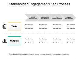 Stakeholder Engagement Plan Process