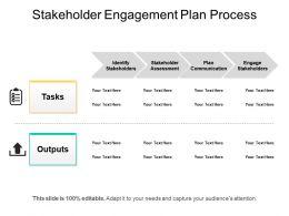 stakeholder_engagement_plan_process_Slide01