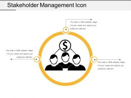 Stakeholder Management Icon 3