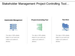 Stakeholder Management Project Controlling Tool Work Progress Status Cpb