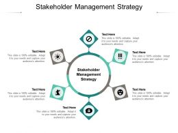 Stakeholder Management Strategy Ppt Powerpoint Presentation File Summary Cpb