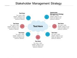 Stakeholder Management Strategy Ppt Powerpoint Presentation Model Guide Cpb