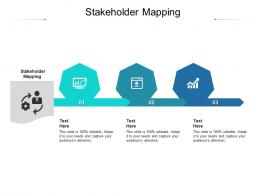 Stakeholder Mapping Ppt Powerpoint Presentation Infographics Grid Cpb