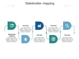 Stakeholder Mapping Ppt Powerpoint Presentation Professional Graphic Tips Cpb