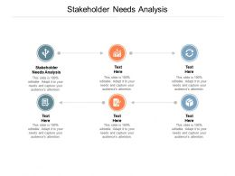 Stakeholder Needs Analysis Ppt Powerpoint Presentation Summary Infographic Template Cpb