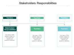 Stakeholders Responsibilities Ppt Powerpoint Presentation Slides Cpb
