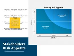 Stakeholders Risk Appetite Ppt Layouts Aids