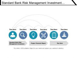 Standard Bank Risk Management Investment Project Finance Report Cpb