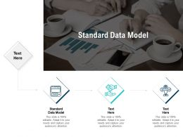 Standard Data Model Ppt Powerpoint Presentation Ideas Guide Cpb