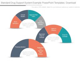 Standard Drug Support System Example Powerpoint Templates Download