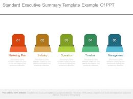 Standard Executive Summary Template Example Of Ppt