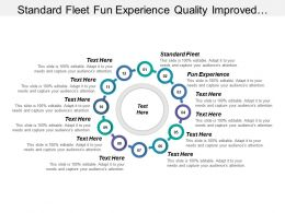 Standard Fleet Fun Experience Quality Improved Cost Reduced