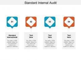 Standard Internal Audit Ppt Powerpoint Presentation Outline Vector Cpb