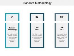 Standard Methodology Ppt Powerpoint Presentation Layouts Background Designs Cpb