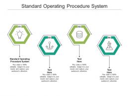 Standard Operating Procedure System Ppt Powerpoint Presentation Professional Portfolio Cpb