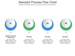 Standard Process Flow Chart Ppt Powerpoint Presentation Infographic Template Themes Cpb