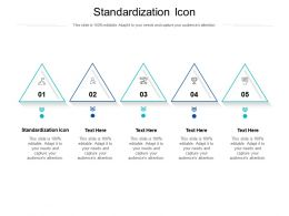 Standardization Icon Ppt Powerpoint Presentation Summary Graphics Example Cpb