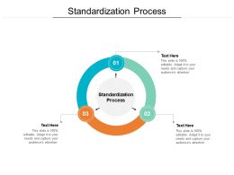 Standardization Process Ppt Powerpoint Presentation Icon Outfit Cpb