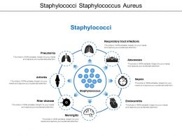 Staphylococci Staphylococcus Aureus