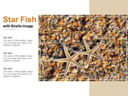 Star Fish With Shells Image