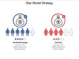 Star Model Strategy Ppt Powerpoint Presentation Infographic Template Images Cpb