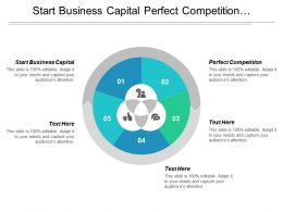 Start Business Capital Perfect Competition Organizational Management Executive Summary Cpb
