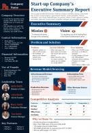 Start Up Companys Executive Summary Report Presentation Report Infographic PPT PDF Document