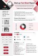 Start Up Fact Sheet Report Presentation Infographic PPT PDF Document