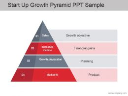 Start Up Growth Pyramid Ppt Sample