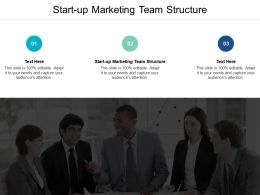 Start Up Marketing Team Structure Ppt Powerpoint Presentation Professional Templates Cpb