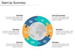 Start Up Summary Ppt Powerpoint Presentation Icon Graphics Pictures Cpb