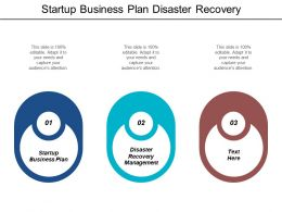 Startup Business Plan Disaster Recovery Management Relationship Strategies Cpb